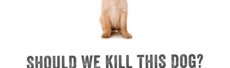 Kill the Celtic Puppy?
