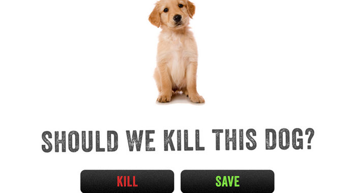 Kill the Celtic Puppy?