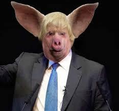 Boris De Pfeffel Pig.jpg